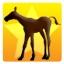 Master of Foal Herding