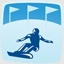 Parallel Giant Slalom Pro