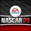 NASCAR 09 EU mini icon