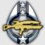 Assault Rifle Expert