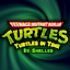 Turtles In Time RS