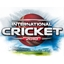 Int'l Cricket 2010