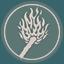 10: Guiding Fires