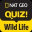 NGQ! Wild Life